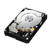 DSX-WDTK-400A, жесткий диск