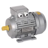 AIS090-L8-001-1-0710, электродвигатель асинхронный трехфазный АИС 90L8