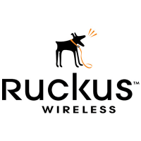 Лицензия Ruckus Wireless 909-0001-ZD12