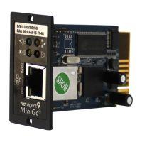DL 801, SNMP-модуль